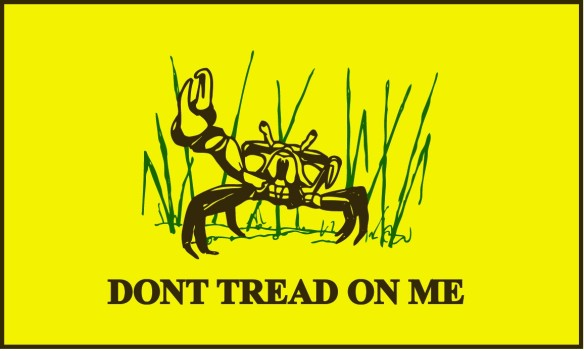 Flood Tide Tread on Me FLAG