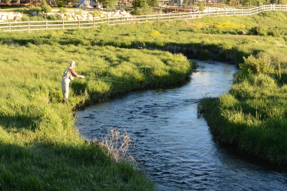 Keith on Small Stream